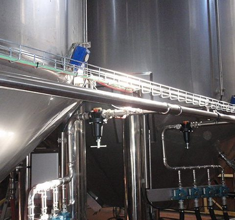red wine cap fermentation